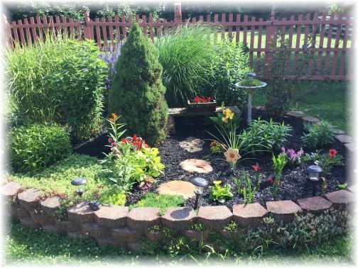 Pond flower garden 7/3/17