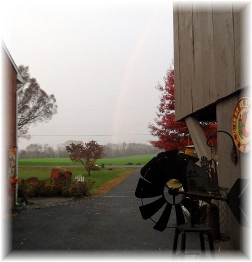 Rainbow 11/7/13