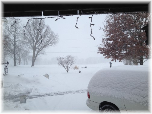 View out from barn door during snow storm 3/5/15