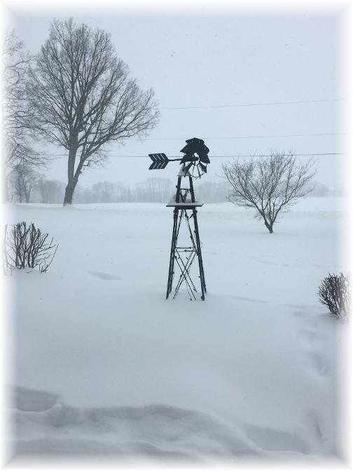 Snow storm 3/14/17