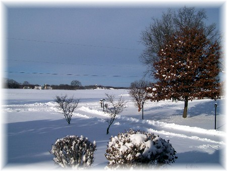 Snow storm 12/20/09
