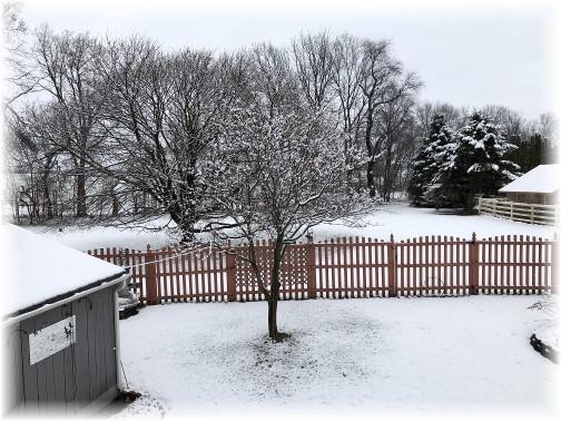 Snowy backyard view 4/1/18