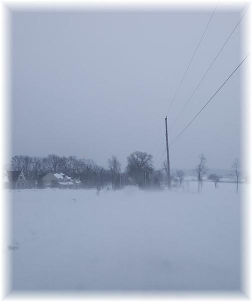 Snowy day 3/15/17