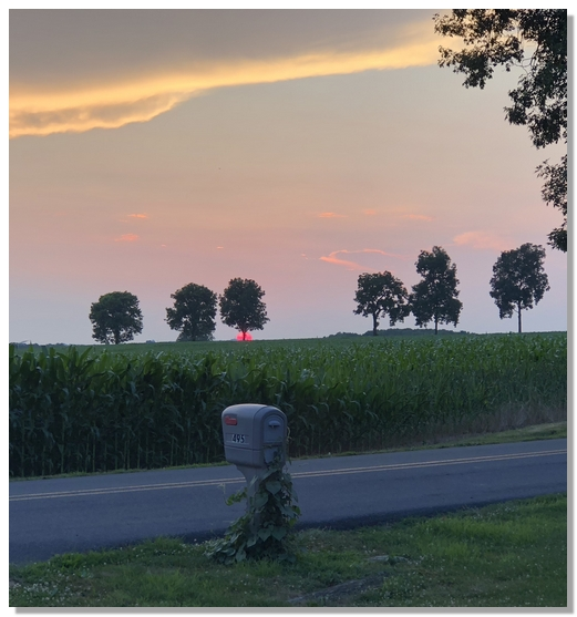 Sunset 7/15/18