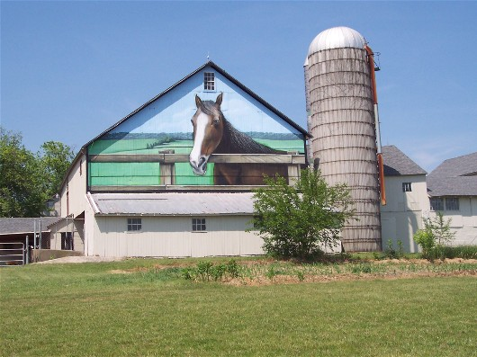 Photo of horse painted on barn