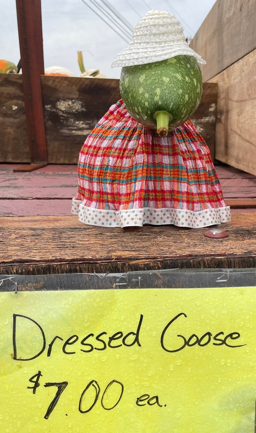 Dressed goose gourd