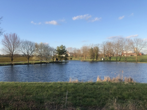 Lancaster County pond and farm scene (Click to enlarge)