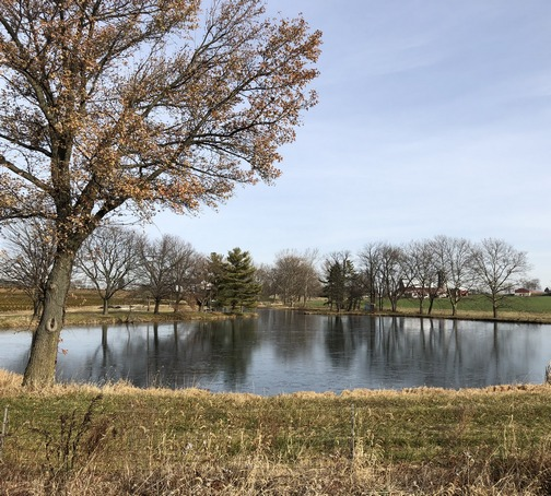 Pond along 283 between Lancaster and Mount Joy