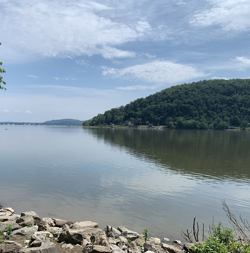 Susquehanna River, Lancaster County PA 6/3/20 (Click to enlarge)