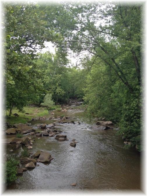 Conewago Creek 6/18/15