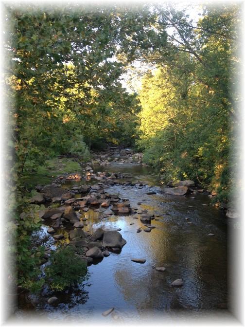 Conewago Creek 8/23/15