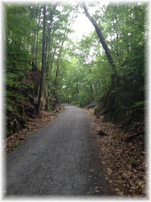 Conewago rail trail 6/18/15