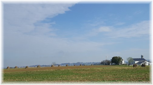 Mennonite farm with corn shocks 11/2/17 (Click to enlarge)