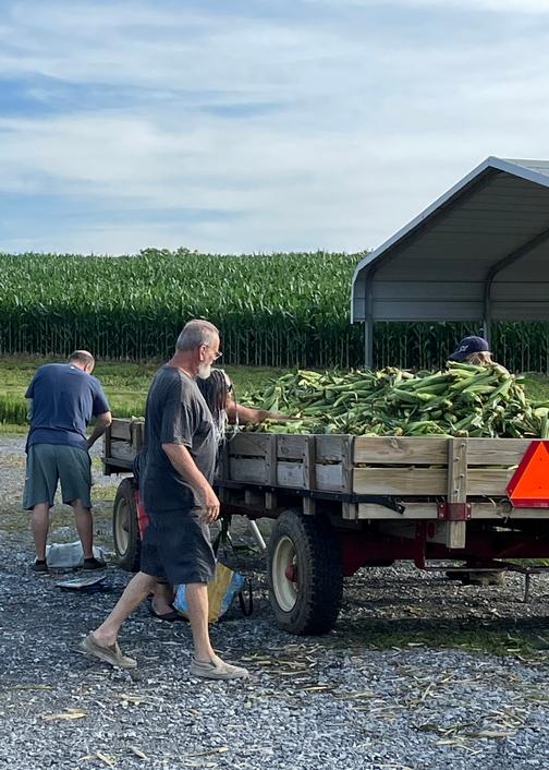 Corn Wagon, New Danville, PA