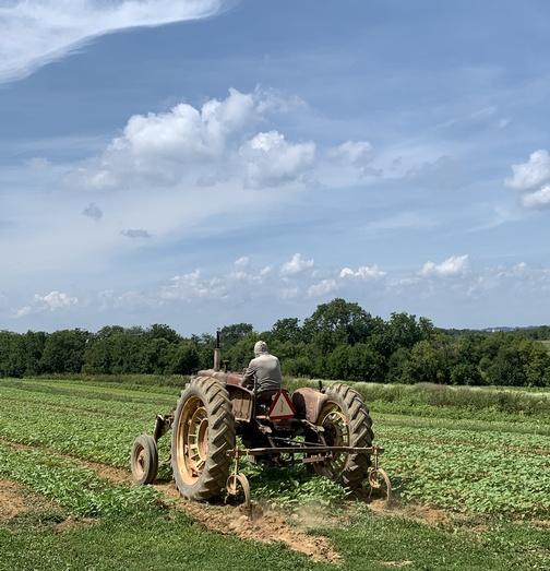 Cramer Farms tractor