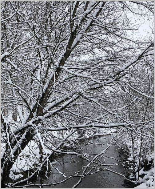 Donegal Creek, Lancaster County, PA 3/2/19