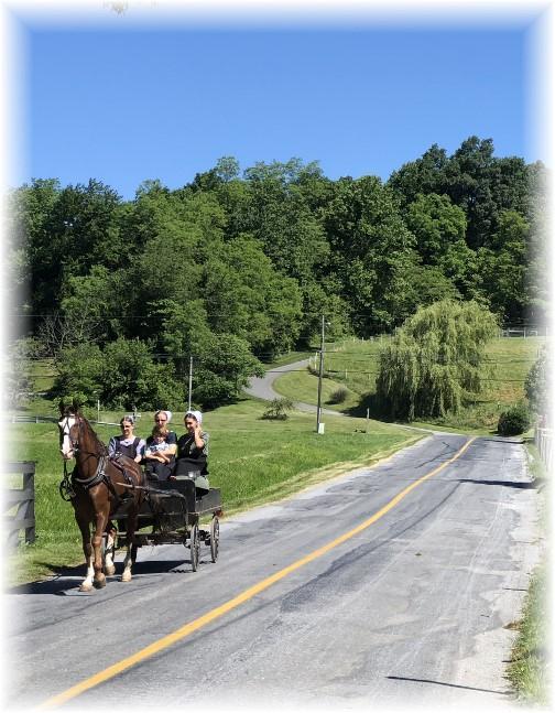 Enola Low Grade trail near Quarryville, PA 6/15/18