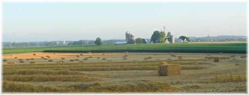 Straw bales, Espenshade farm 7/4/13