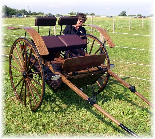 Fancy cart at the Lancaster County Carriage & Antique Auction in Bird In Hand PA.