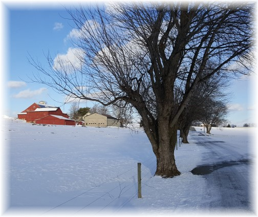 Flory farm 2/11/16 (Click to enlarge)
