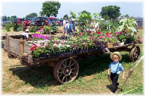 Flower wagon at the Lancaster County Carriage & Antique Auction in Bird In Hand PA.