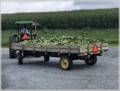 Corn wagon 8/3/18