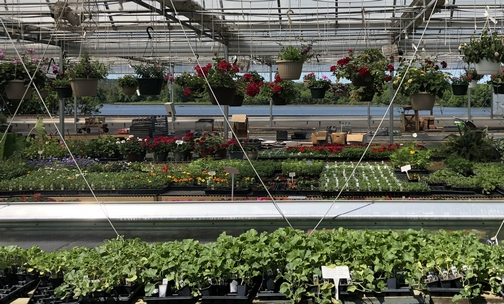 Funks greenhouse, Lancaster County, PA