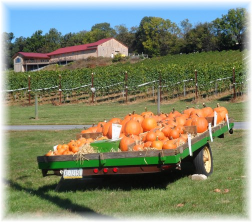 Pumpkin wagon on Grandview Road 9/24/13