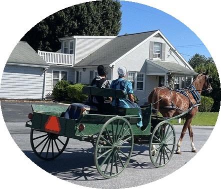 New Holland wagon