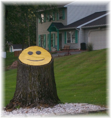 Happy face tree stump