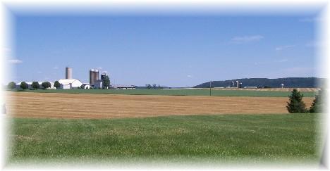 Lancaster County farm scene 6/8/10
