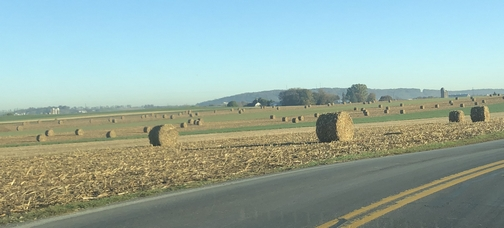 Hay bales on Farmersville Road, Lancaster County, PA 10/24/19 (Click to enlarge)