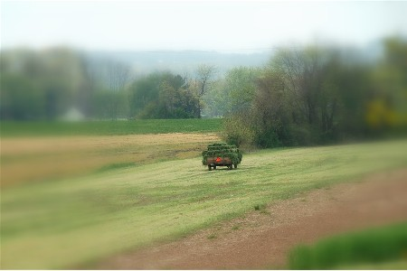 Hay wagon (photo by Doris High)