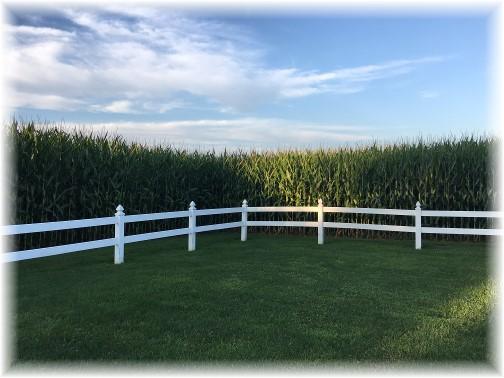 Kraybill Church Road corn 8/13/17 (Photo by Brooksyne)