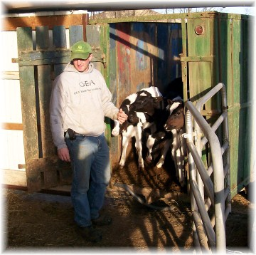 Farmer with heifer calves near Mount Joy, PA