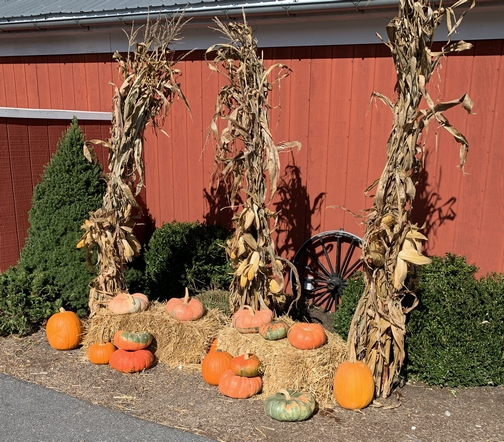 Hershey Farms autumn display in Lancaster County, PA 10/14/19