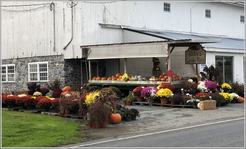 Roadside stand, Lancaster County, PA 10/14/18 (Click to enlarge)