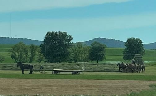 Kraybill Church Road hay harvest
