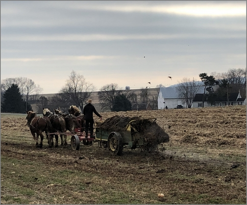 Kraybill Church Road manure spreading 12/10/18 (Click to enlarge)
