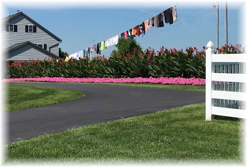 Lancaster County clothesline (Click to enlarge)
