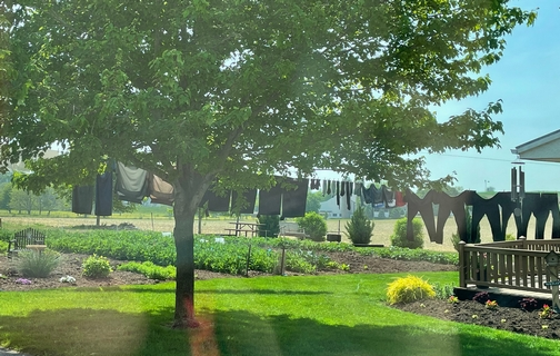 Lancaster County garden and clothesline