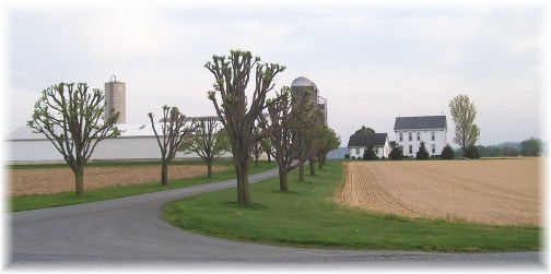 Lancaster County Farm (Airport Road)
