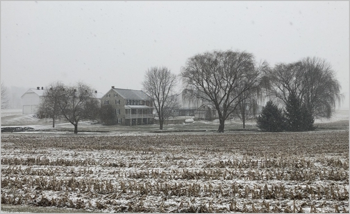 Lancaster County farm in snow 1/29/19 (Click to enlarge)
