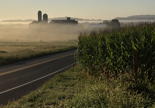 Lancaster County fog 9/3/19 Click to enlarge
