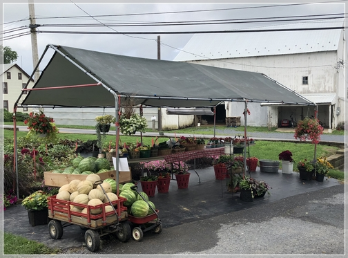 Lancaster County produce stand 8/3/18