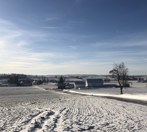 Lancaster County PA rural snow scene 1/10/20 (Click to enlarge)