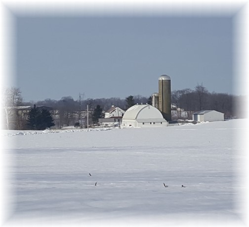 Lancaster farm in snow 1/31/16