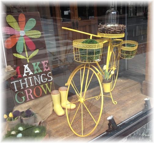 Store window, Lancaster, PA
