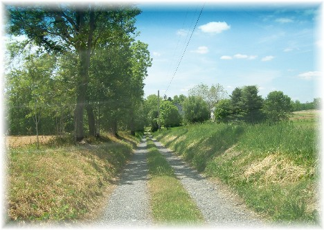 Long gravel farm lane