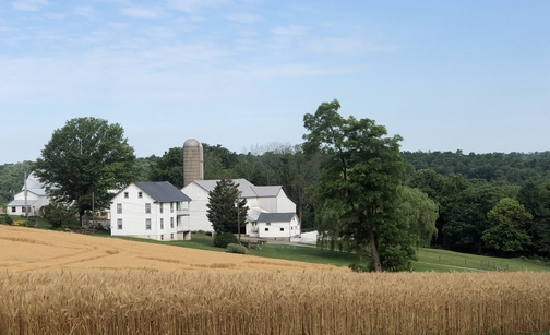 Martic Township farm